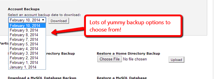 Cpanel Restore Options